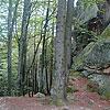 Pierced Rocks