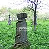 Старовинний цвинтар в с. Дмитровичі
