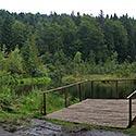 Zhuravlyne lake