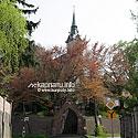 Костел и монастырь кармелиток (1900), ул. Татарская 7
