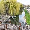Річка Вирка