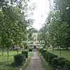 Парк перед дворцом