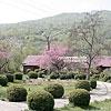 Відпочинкові котеджі на території селища