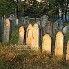 The old Jewish graveyard