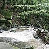 The Voyevodyn river