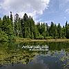 Озеро Озирце (Национальный природный парк «Синевир»)
